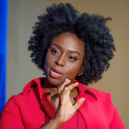 chimamanda Adichie Quotes Two.jpg
